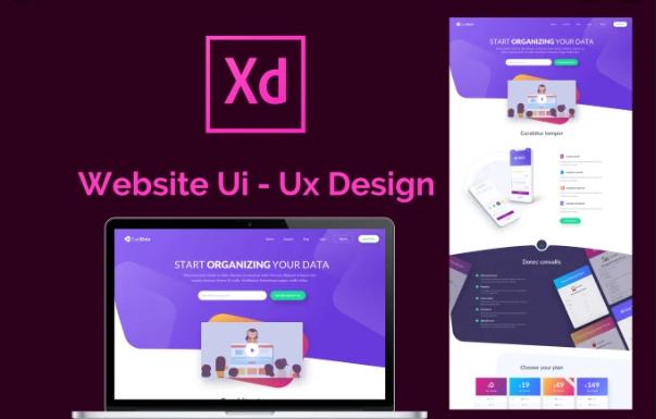 Training-course-in-Ui-Ux-Design-using-XD-t4d