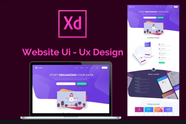Training Course In Ui Ux Design Prototyping Using Adobe Xd T4d